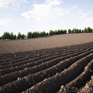 Plowed Earth Field
