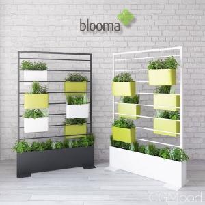 Blooma Vegetal Divider