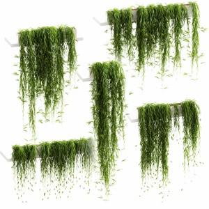 Hanging Plants For Shelves. 5 Models. Set 3