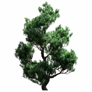 Decorative Pine Tree