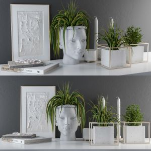 Decorative Set Sculpt Pot And Plants