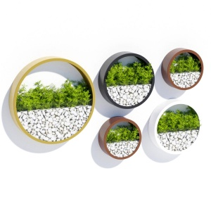 Wall Planters One
