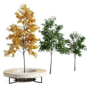 Tree Flowerbed Green Yellow