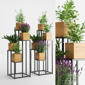 Quadrant Plant Stand