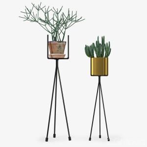 Shelf With Plants