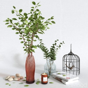Decorative Set With Eucalyptus In A Vase #2