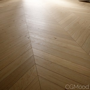 Chevron Oak Floor