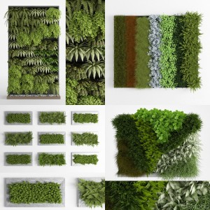 Phytowall collection 1