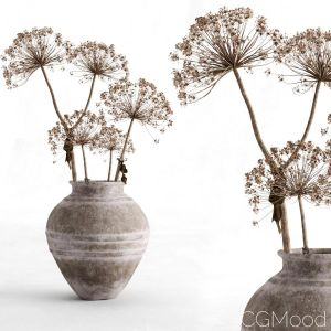 Hogweed In A Clay Vase