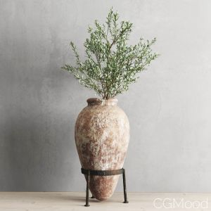 Antique Vessel And Olive Branch