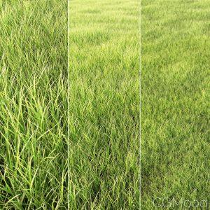 Arch_grass01