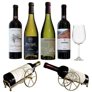 Wine Bottle Set 17