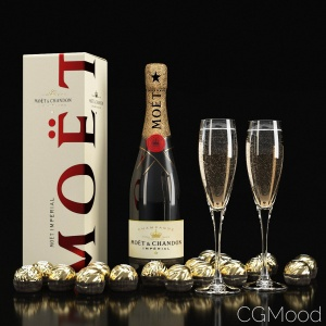 Decorative Champagne MÖét 3