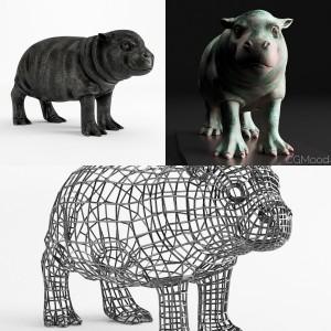 Hippo set