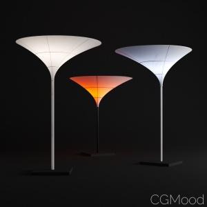 Tulip Lights By CSMA