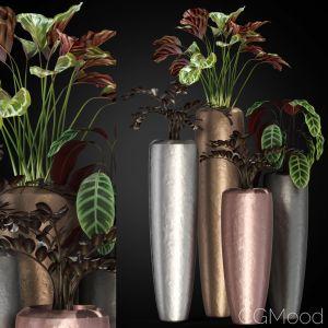 Plants Collection 272 Fleurami Loft