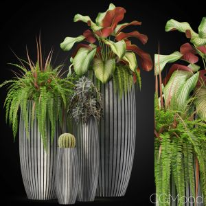 Plants Collection 273 Fleurami Lines