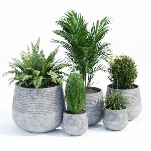 Fiber Clay Planter Set
