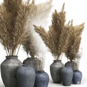 Decorative Set Of Clay Vases And Pampas Grass