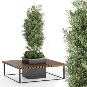 Bench And Plant 01