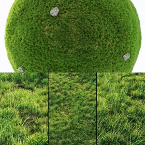 Grass For Landscaping Exterior collection Vol 01