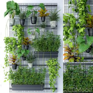 Wall Grid Plant Pot 6