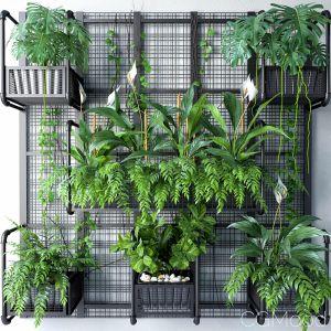 Wall Grid Plant Pot 5