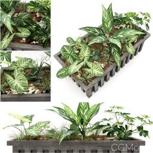 Plant Pot 1