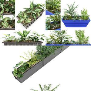 Plant Pot Collection