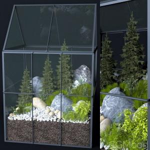 Greenhouse Moss Terrarium