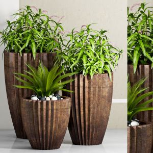 Decorative Plant Set - 13