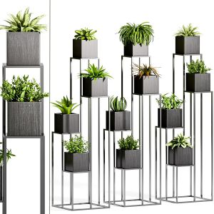 Decorative Plant Set - 14