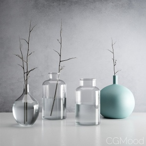 Decoration vases with berries