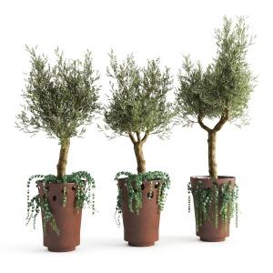 JardiniÈre Green Palacio I Olive Tree
