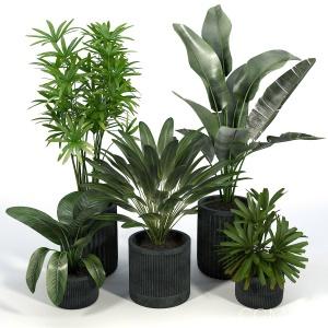 Cozzo Planter