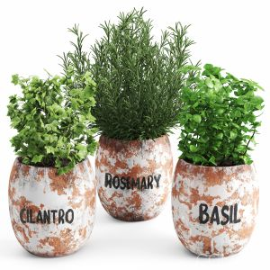 Greenery Plants Set