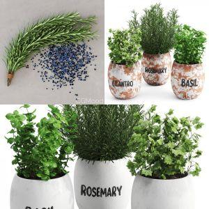 Greenery Plants Set vol. 1