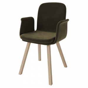 Palm Upholstered Dining Chair With Armrest