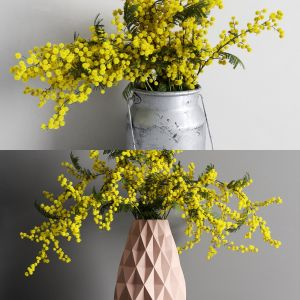 Mimosa Bouquet .vol01