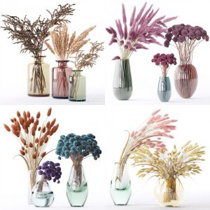 Dry Flower Collection 12