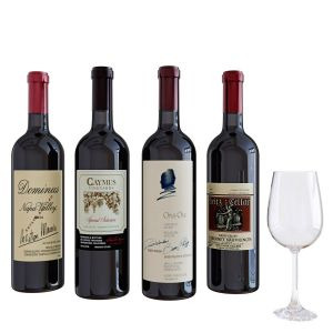 Wine Bottle Set 1