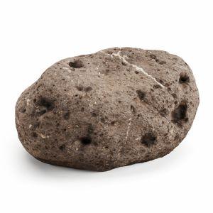 Desert Rock 06