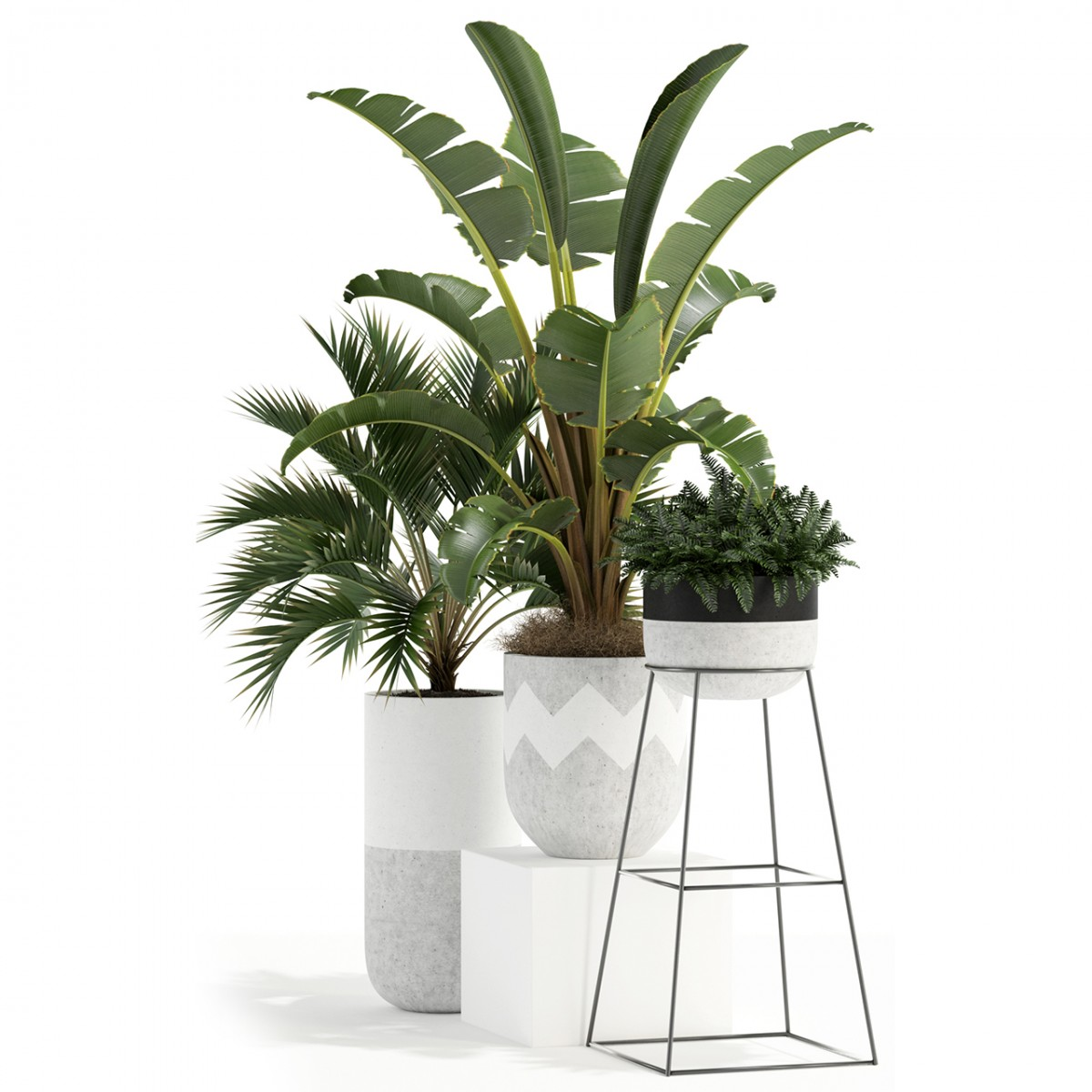 Plants Collection 110 - 3D Model for VRay