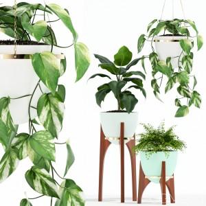 Plants Collection 134 Retro Print Revival Planter