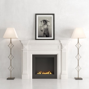 The fireplace is marble with a biotope