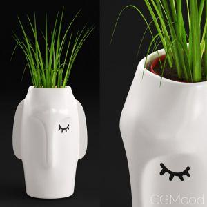 Amenna Vase