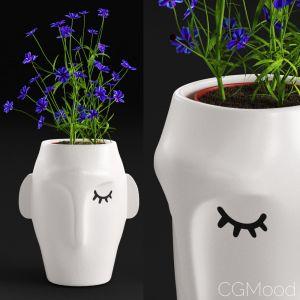 Amenna Vase Small