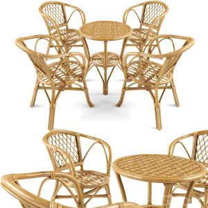 Garden Rattan Furniture Set 1
