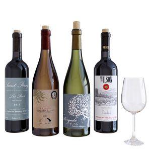 Wine Bottle Set 10