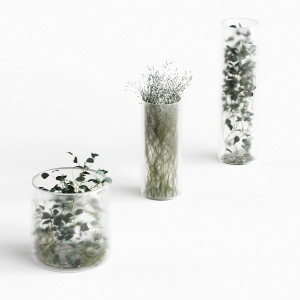 Plants In Frosted Vases set